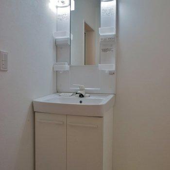 洗面所の広さも十分です。