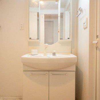 お風呂のすぐ横に洗面台。