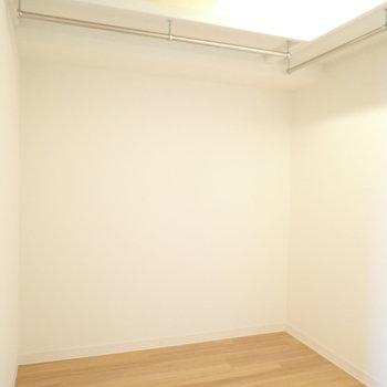 【洋室6.1帖】大きめのものを収納できます。