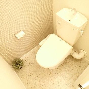 トイレは十分な広さ。
