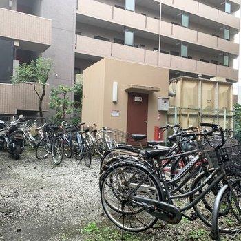 駐輪場は自由に止めるスタイルですが秩序が保たれていました。