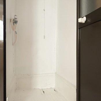 浴槽なしのコンパクトなシャワールーム。