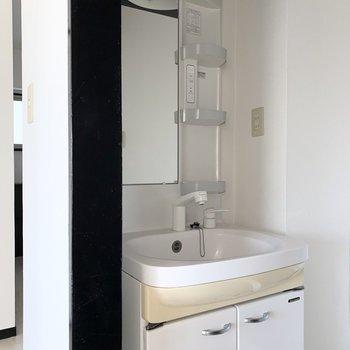 洗面化粧台はしっかりシャワーヘッド付き。※写真はクリーニング前 ※フラッシュ撮影です