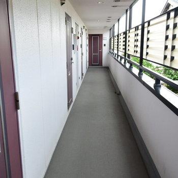 廊下もきれいですね