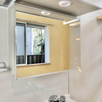 シンクの上には鏡があります。洗面台としても使えそうです。