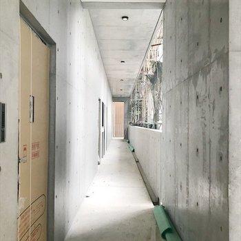 廊下はコンクリート打ちっぱなしでいい雰囲気◎