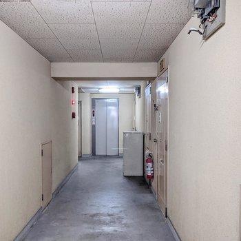 共用廊下は室内。少し暗く感じました。