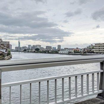 駅まではこの橋を渡って。曇り空でも福岡タワーがきれいに見えます。