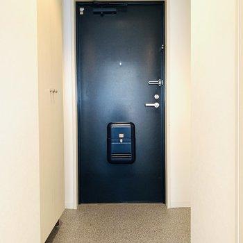 パキッと締まる紺の玄関からいってきまーす