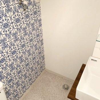 奥に洗濯機置場。全て一つの空間に。