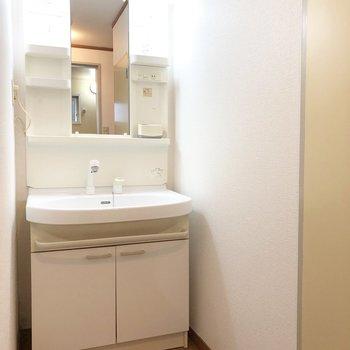 洗面台は歯ブラシホルダーを置けそうな部分がたくさん付いています。