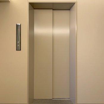 5階のお部屋ですので、エレベーターをご利用くださいね。