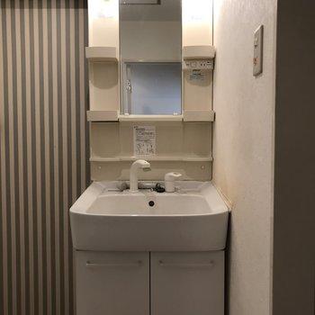 洗面台は独立式で収納豊富※写真は清掃前のものです
