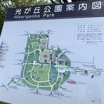 【おまけ】練馬区最大の公園、光が丘公園まで行ってきました!