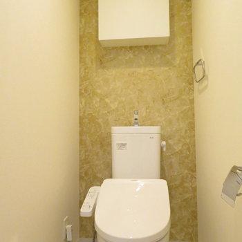 トイレは温水洗浄便座付きです※写真は同間取り別部屋のものです。