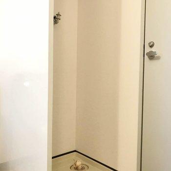 洗濯パンは脱衣所内に。(※写真は4階の同間取り別部屋のものです)