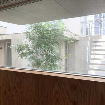 FIX窓からは共用部の木々が見えます。