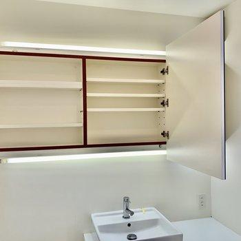 鏡裏は収納。歯ブラシや洗剤はここに置きましょう。