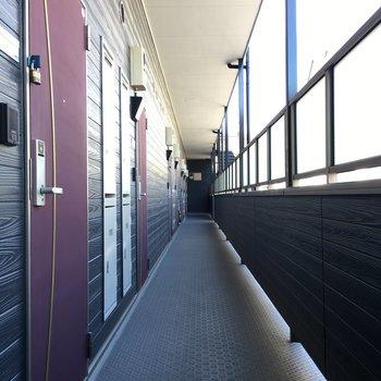キレイな共用廊下。明るいです。