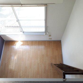 差し込む光と、紺✕フローリングがきれい!※写真は6階の同間取り別部屋のものです