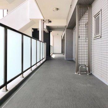 共用廊下もとっても綺麗でした◎
