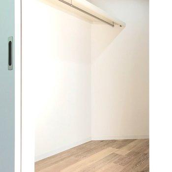 クローゼットは書斎にもできそうな広さです。ハンガーポールも2本で、たくさん収納できますよ。