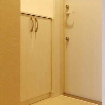 コンパクトな玄関(※写真は4階の同間取り別部屋、モデルルームのものです)