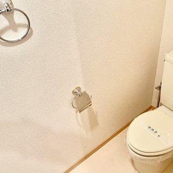 やっぱりトイレは個室じゃないと。銀のペーパーホルダーとタオルホルダーがオシャレ。