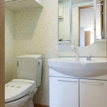 サニタリーへ。トイレと洗面台はお隣さん。