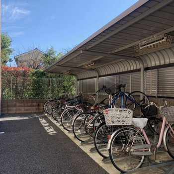 自転車置き場は建物後ろにありました