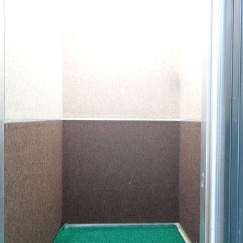 エレベーターの配色が森みたいだったのでぱしゃり。