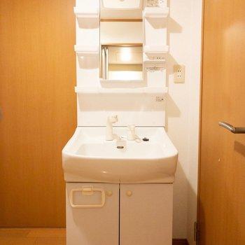トイレのドアを開けると洗面台に当たるので注意。