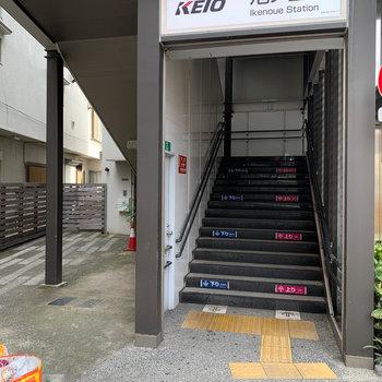 階段左に、先ほどの共用部ご登場。