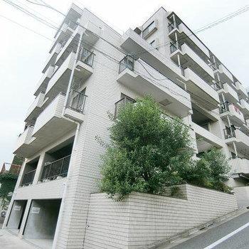 志村三丁目7分マンション