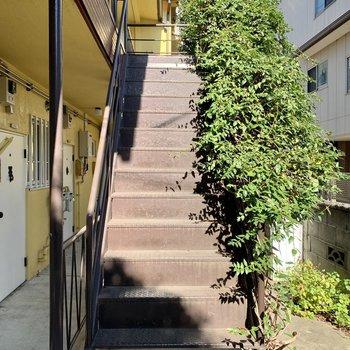 お部屋へはこの階段を上って。