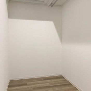 【洋室】ウォークインクローゼットは、頑張れば寝れるくらいの広さ。