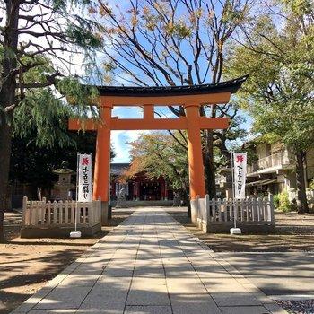 近くにあった【旗岡八幡神社】。威風堂々。