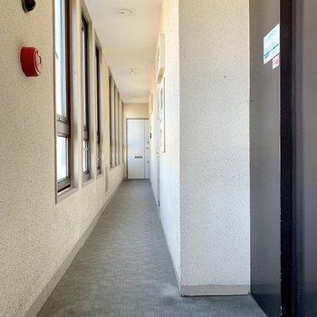 共用廊下も窓が多くて明るい。