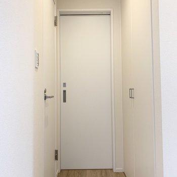 ドアの先はちょっとした廊下になっています。突き当りの引き戸がサニタリー、左の扉がおトイレ。(※写真は2階の同間取り別部屋のものです)