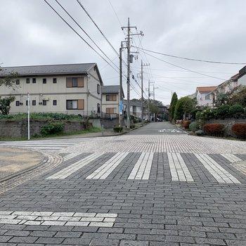きれいに舗装された通り道。