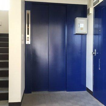 エレベーターもお揃いのブルーですよ。