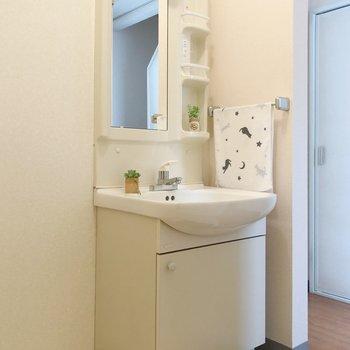 洗面台は収納が多く、使いやすそう〇