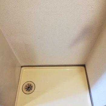 洗濯機は廊下に置きます