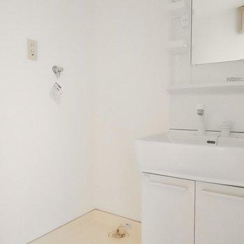 洗面台と洗濯機置き場は脱衣所にセット。