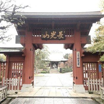 駅前に立派な妙蓮寺があります。