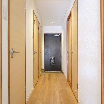 廊下からは洋室・トイレ・脱衣所にアクセス可能。収納もあります。
