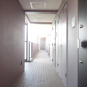 質素な共用廊下。