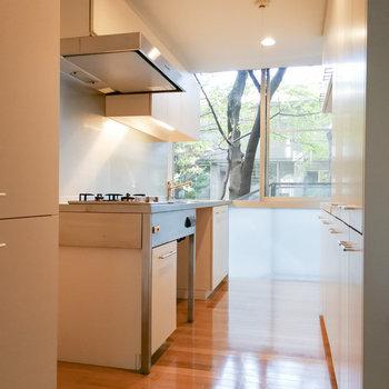キッチンを見ていきましょう。