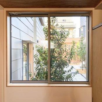 【洋室】窓からは緑が見えます。