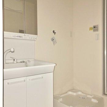 さて、廊下に戻ってサニタリールームを見てみましょう。※写真はフラッシュを使用して撮影しています。